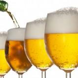 Vereadora busca apoio para impulsionar mercado de cervejas artesanais