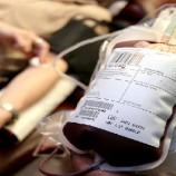 Escola de idiomas lança campanha de incentivo à doação de sangue