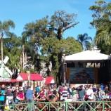 Bauernfest acontece entre os dias 24 de junho e 3 de julho no Palácio de Cristal