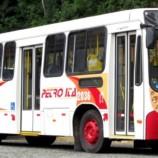 Informe Setranspetro: ônibus de todas as empresas voltam a circular