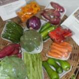 Mercado de orgânicos ganha novos incentivos na Região Serrana