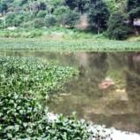 Entorno do lago de Nogueira será reurbanizado e receberá ciclovia