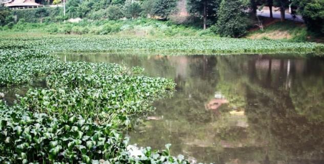 Lago de Nogueira receberá serviço de limpeza