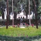 Petrópolis recebe curso sobre Essências Florais Australianas com certificado internacional
