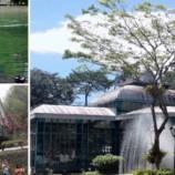 Atrações turísticas abertas no feriado de Tiradentes e São Jorge