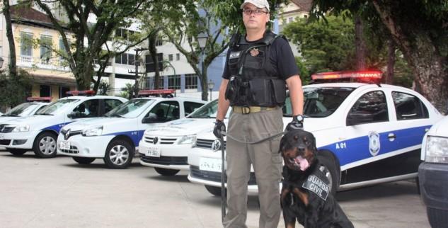 Guarda Civil conta com oito cães para operações de choque de ordem
