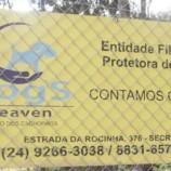 Grupo arrecada ração e remédios para abrigo Dog's Heaven